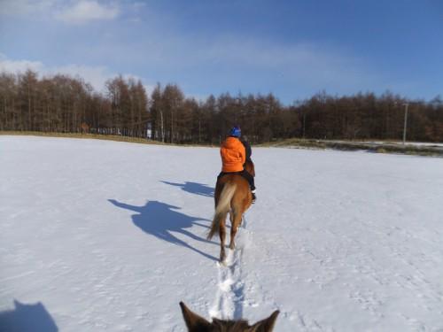 雪の野原で